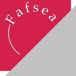 Bilan de compétences avec le Fafsea